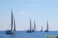 Sea Wind Cup 2013